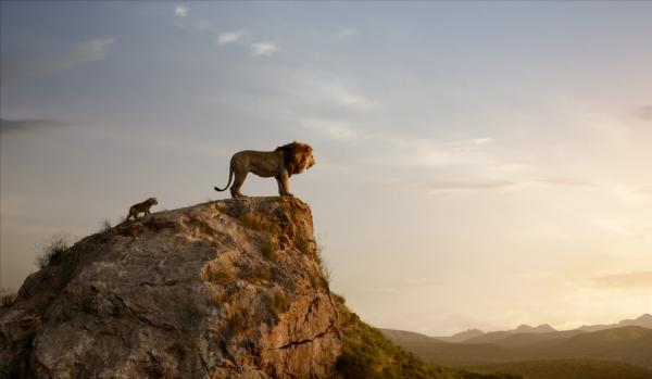 Le Roi Lion en sortie nationale mercredi 17 juillet !