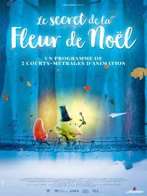 LE SECRET DE LA FLEUR DE NOEL